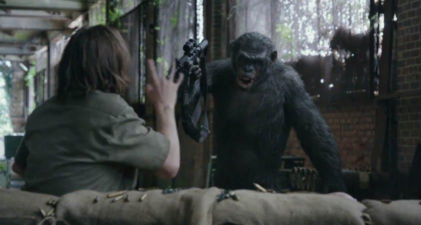 Spiele den haarigen Affen